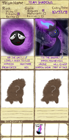 PMD-Explorers: Team Shadows by TeamNormalizer
