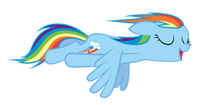 Dash enjoy to fly by fluttershy7