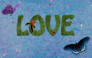 Love Grass Wallpaper by skyleaf