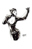 Catwoman comm 2 by manulupac