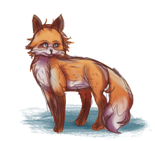 [Practise] ~Fox~ by Maechi-Toff