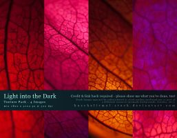 Light into the Dark - Texture Pack by kuschelirmel-stock