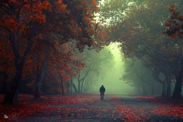 Walking Stranger by ildiko-neer