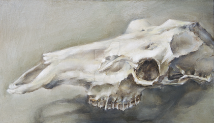Deer skull - oil study by hanestetico