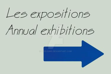 Les expositions by pixeliums