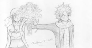 Flowers by Christina27122010