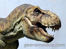 T Rex 1/8 scale 5 feet in length close up by GalileoN