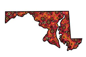 Maryland Paisley by YoAdrienne