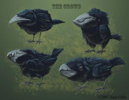 the crows by Onikaizer