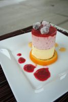 Cranberry-Orange Frozen Mousse by RepoLadyWallace