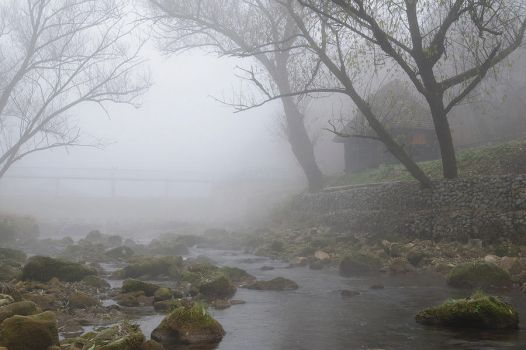 Morning Mist by draganea
