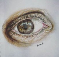 Last year whem i TRIED realism by KastanjeS