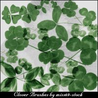 Clover brushes by miss69-stock