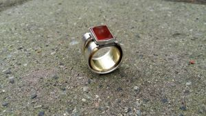 Ring Project 2 by Anhrak