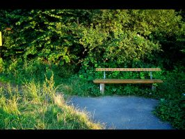 lonely bench by backatone