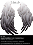Solace Wings - Silver to Black by Thy-Darkest-Hour