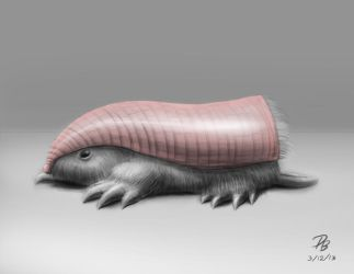 Pink Fairy Armadillo/Pepto-dillo by TheDude-In-NavyBlue