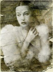 Hedy Texture by Designdivala