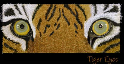 Tiger Eyes finished by Davuu