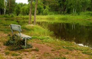 old bench on the shore of the pond by Korolevatumana