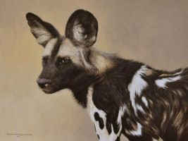 AFRICAN WILD DOG 16 by 12 inches Oil on Panel. by chandlerwildlifeart
