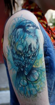 Bird healed by grimmy3d