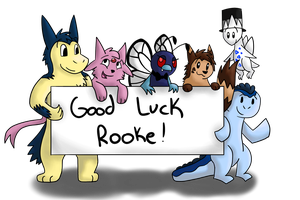 Good Luck Rooke! by redyoshi77
