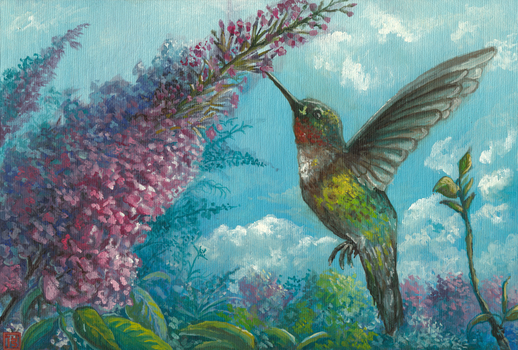The humble hummingbird by MalthusWolf
