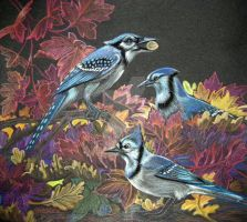 Blue Jays by Day by HouseofChabrier