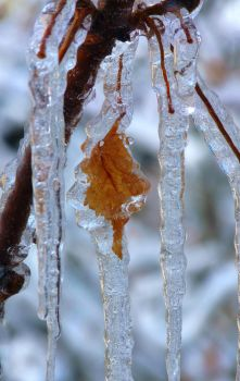 Frost And Ice. Part 2 by EldarZakirov