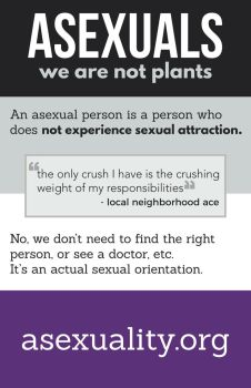 Asexuality Poster by vladzotov