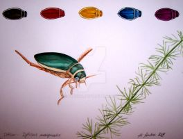 Great diving beetle by flysch