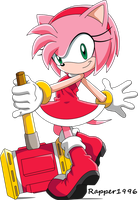 Amy Rose (Sonic X) by Rapper1996
