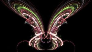 Butterfly by Bambr