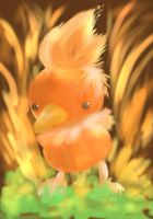 Torchic -Pokemon Ruby and Sapphire by TheTigerMaster
