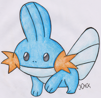 Mudkip by Shabou
