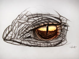 Dragon eye - Drawing by MuuseDesign
