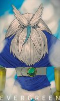 ADVENTURE TIME -EVERGREEN by emperor-smash