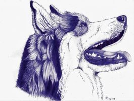 Dog ballpoint pen 3 by DrawingNynke
