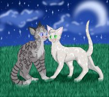 Cats-Warriors: Jayfeather x Halfmoon by Do-omed-Moon