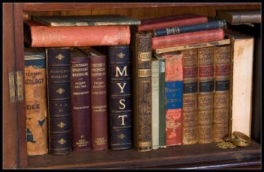 A real Myst book - library by riumplus