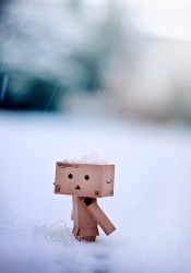 Danbo's first snow by Lady-Tori