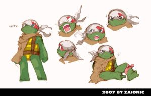 turtle boy by zaionic