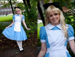 Alice by AkraruPhotography