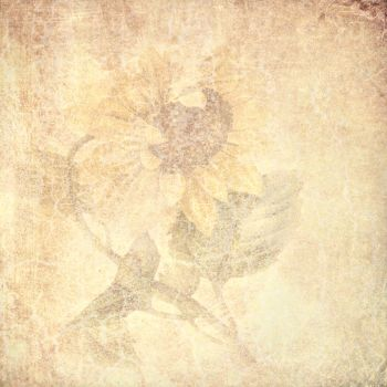 FREE TEXTURE VINTAGE FLOWERS #7 by My-AngelWings