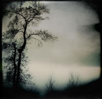The Other World by intao