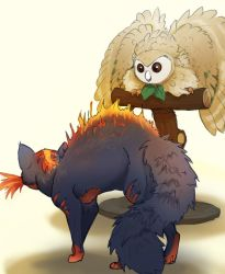 Litten and Rowlet by turnipBerry