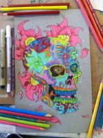 Skull of colorful  by DragonGscales2015