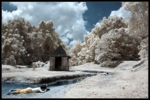 sime forest infra red by inckurei
