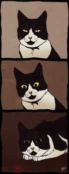 Kitty eyes by Lhuin